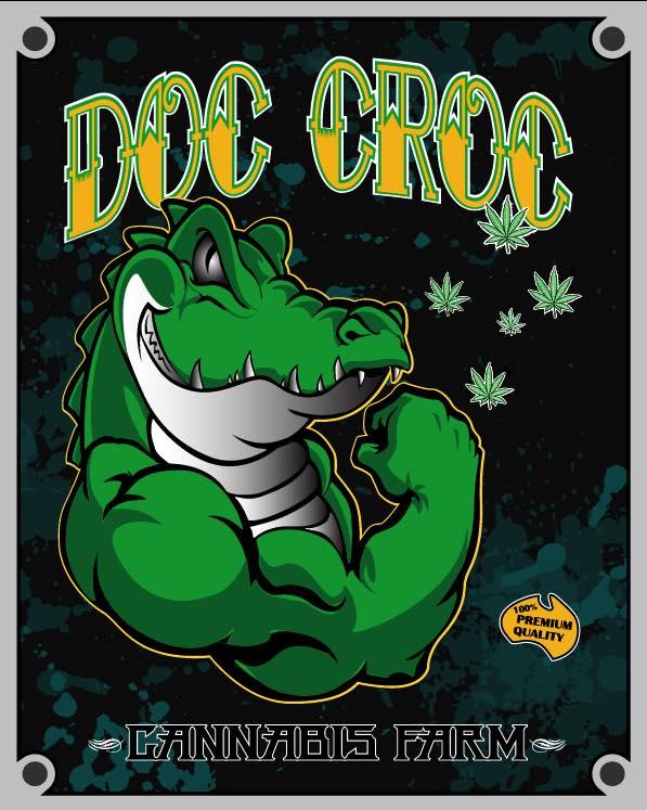 DocCroc.jpg