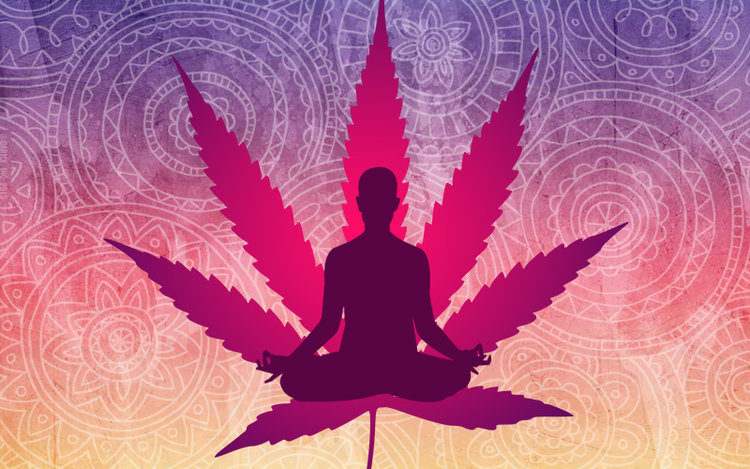 Image result for yoga cannabis