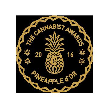 2016 National Cannabist Awards Marketing Customer Experience The Novel Tree