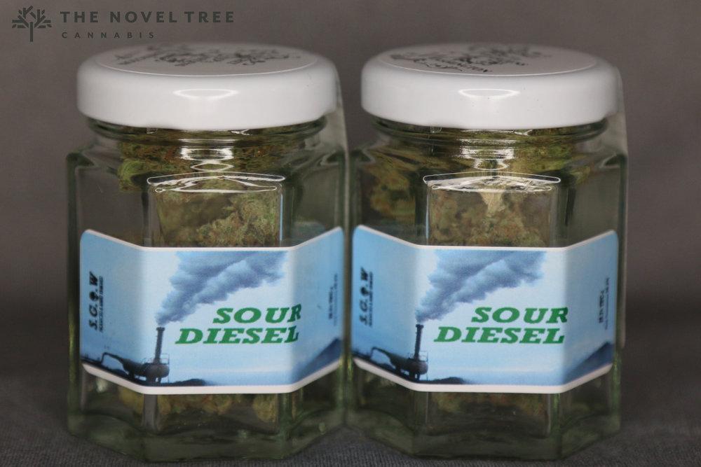 SGOW - Sour Diesel.jpg