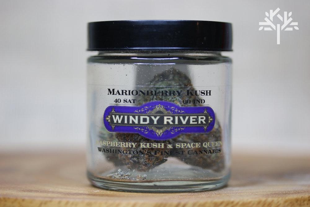 WindyRiver - Marionberry Kush.jpg