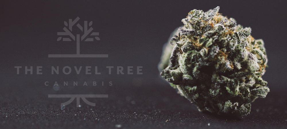 The Novel Tree - Raven Grass - Blackberry Kush 8.jpg