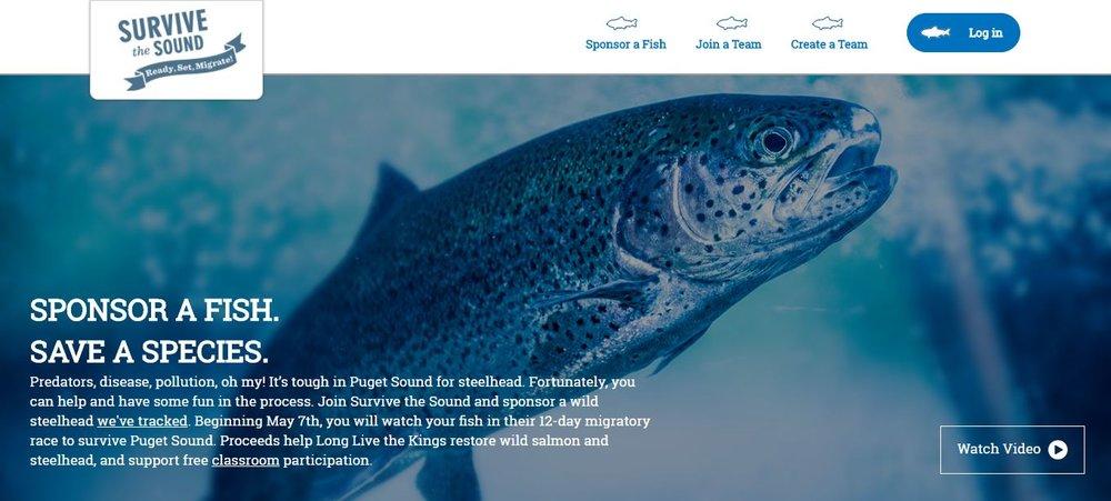 Save the Salmon.JPG