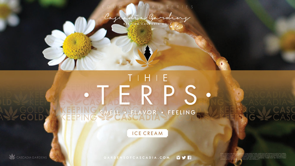 CG_TVr16-9_TheTerpsIceCream_01.jpg