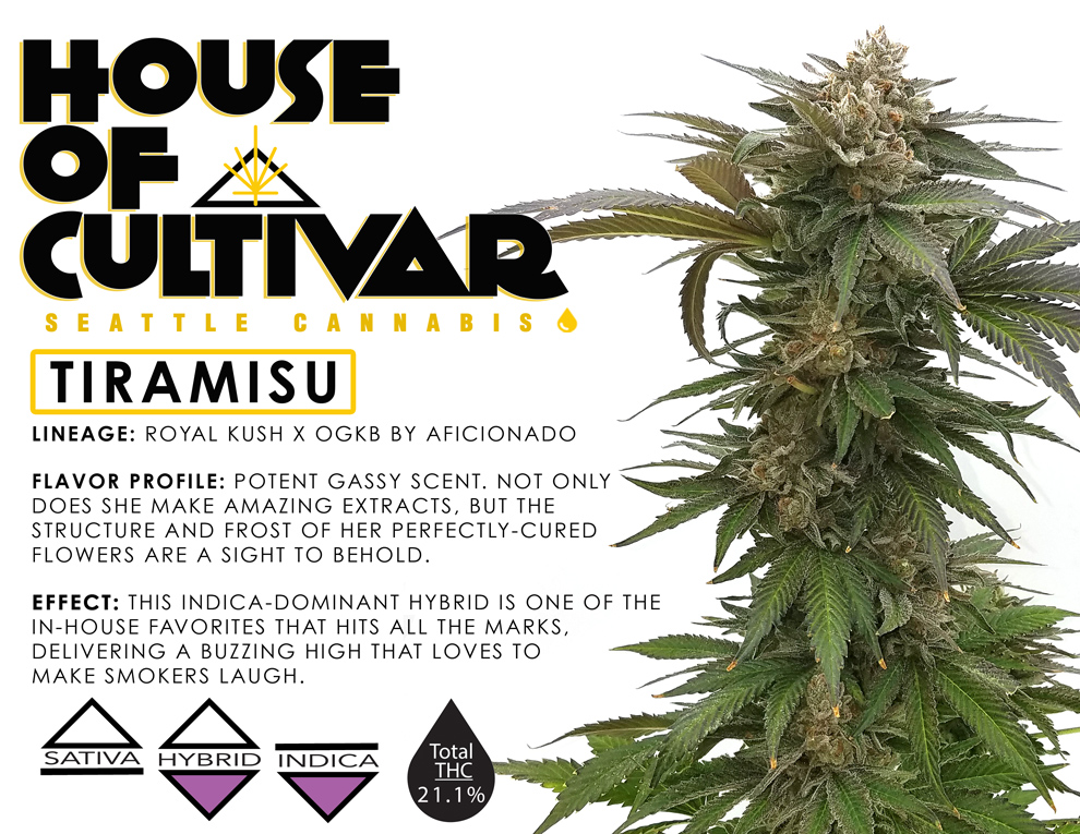 Nicely designed tasting notes, with all the strain's characteristics described in colorful detail. Tiramisu is among the strains that will be delivered in our first shipment!