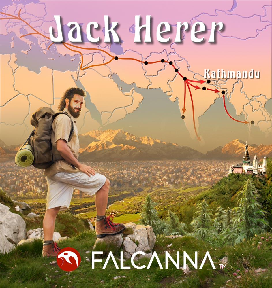 Jack_Herer_strain-art.jpg
