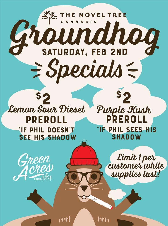 Groundhog-06.jpg