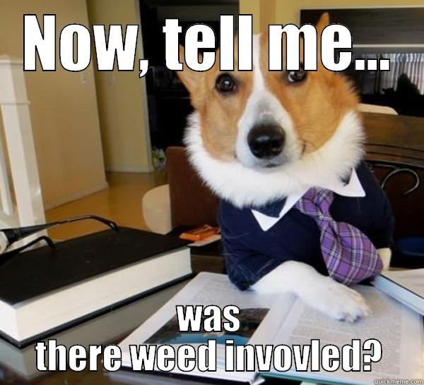 Lawyer Corgi - Business cat's arch enemy.via quickmeme.com