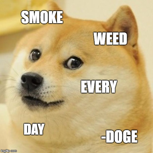 DabbingDoge - There will be more Shiba Inus on the list!via imgflip.com