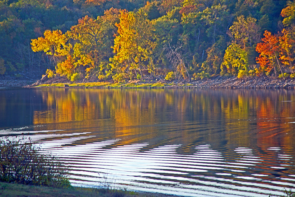 Ripples On Still Waters Fall Season.jpg