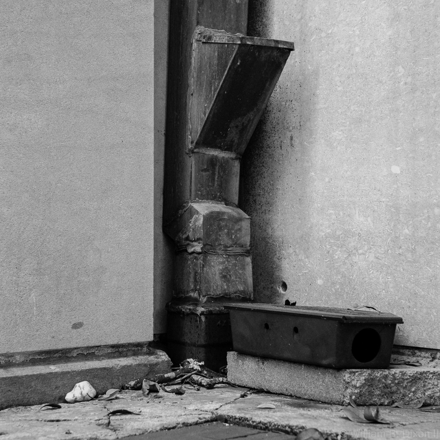 Drainpipe & Rat Trap