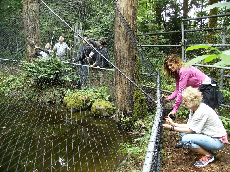 New Predator Net Installation - June 17th 2017A new net was installed over the new wiring.(Right) members helping with installation of new netting.  (middle-down) The little girl picked up most of the float metallic paper that got left on the ground.   She's the niece of members Melissa and granddaughter of Dave.
