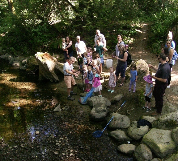 Clean Trails  - May 15 2018A preschool class from Kiddies Corner came for a tour and a visit to our hatchery and creek.   They discovered cigarette butts, plastic bottles, cans, pizza box, sweater, fish net, plastic cups straws, lots of paper and more plastic cups and pieces in the creek and at the sides.  The children's parents agreed to shorten their tour time and pitch in to help load out the trash.    This particular spot has recently been damaged and littered by people hanging out here during the day. Our Society would like to thank all the trail walkers of Hyde Creek who carry along garbage pickers and bags and help keep our trails clean.   We would also like to thank the helpful students and young people who, working on their own, pick up many items along the creek edges.  Today we'd especially like to thank the 3-5 year olds.