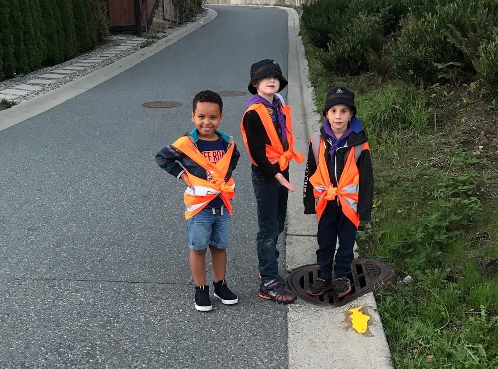 Beavers & Fish - Sept 17th 2018Thanks to the beavers that came out to mark local storm drains!