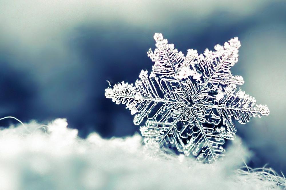 SNOWFLAKE      IMAGE: HDWALLPAPERSOS.COM