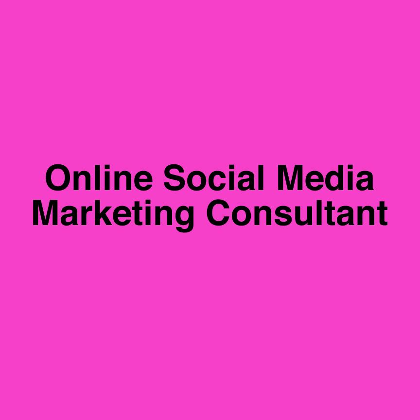online social media marketing consultant image 5.1