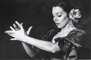 flamenco-1-etxe