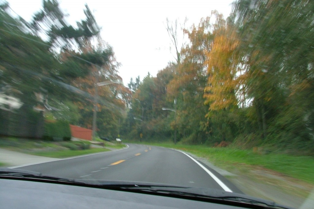 DrivinginSeattle