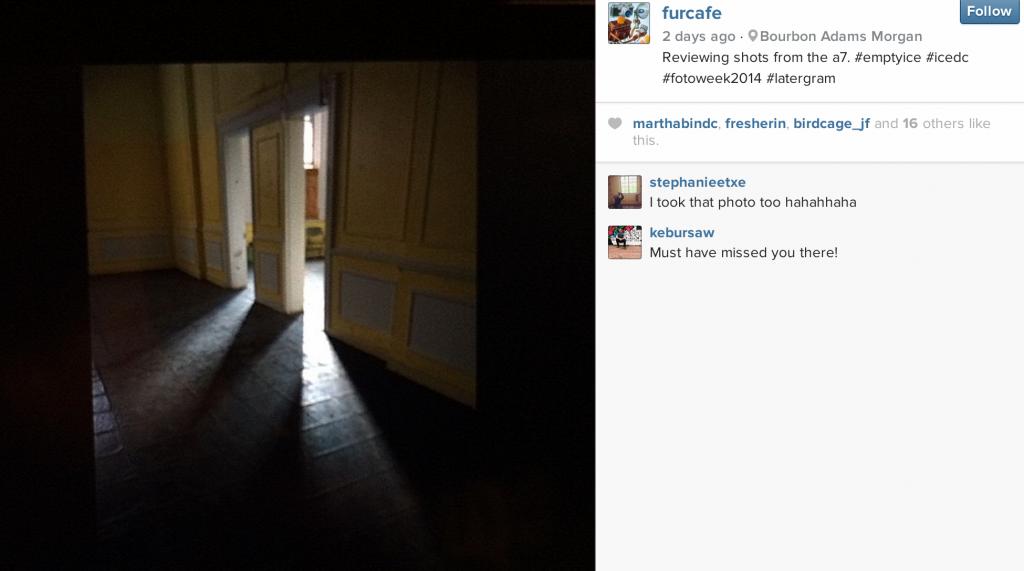 FurCafe photo on Instagram