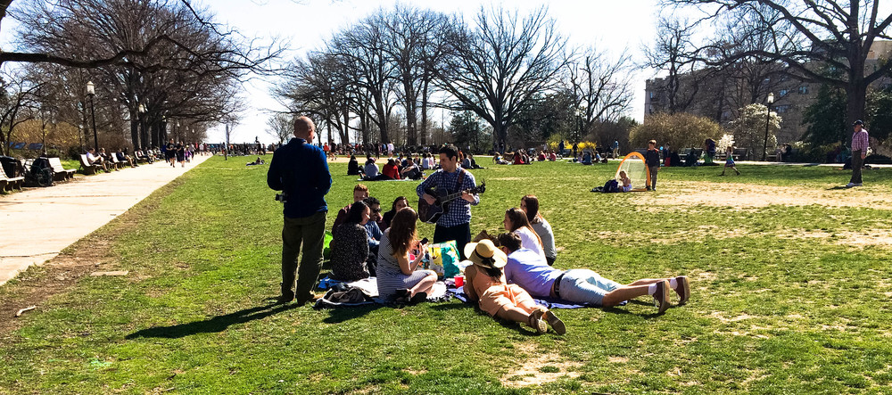 Our 2nd annual Easter brunch in Malcolm X park