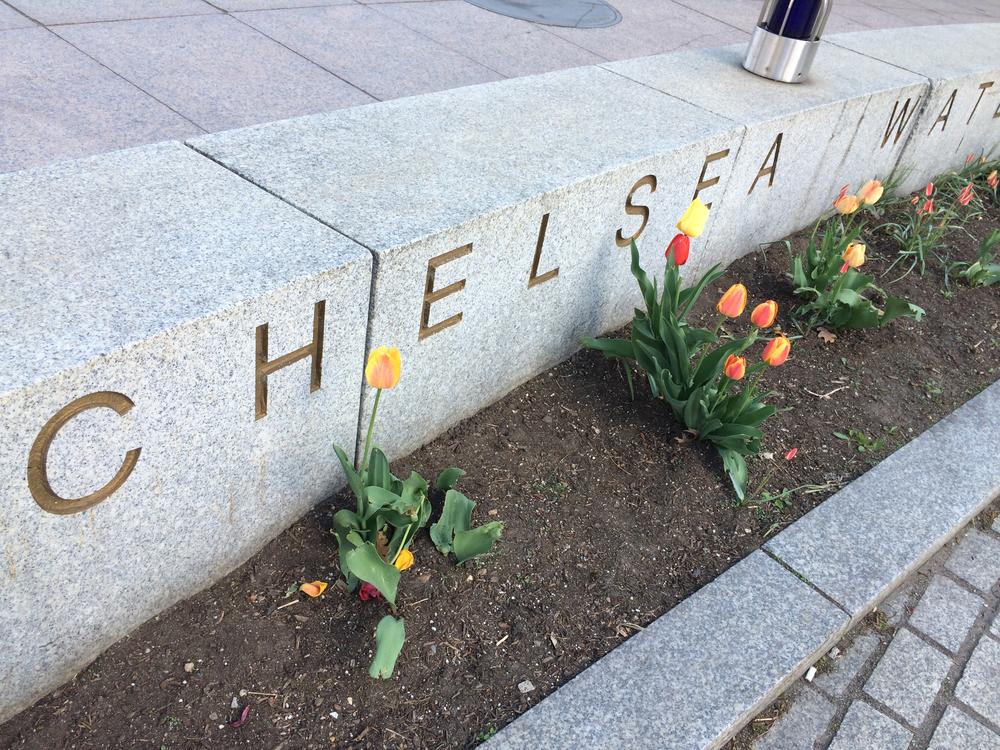 chelsea-spring.jpg