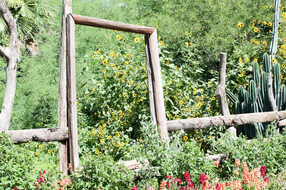 Secret gardens at Singh Farms