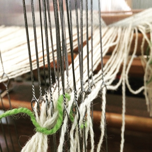 Heddles on the loom I am dressing.