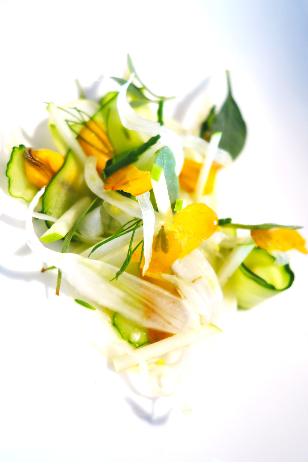 Mussel Salad fennel and cucumber