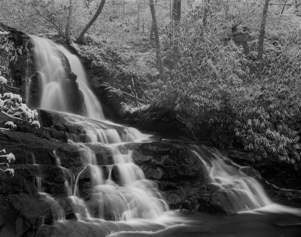 Laurel Falls 4x5 Ilford Delta 100, f/32, 6s, N+1 development