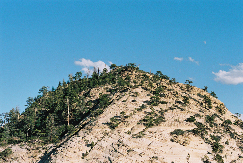 East Northgate Peak.  35mm Kodak Portra 160.