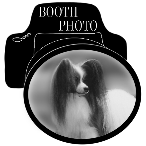Booth Dog Show Photography