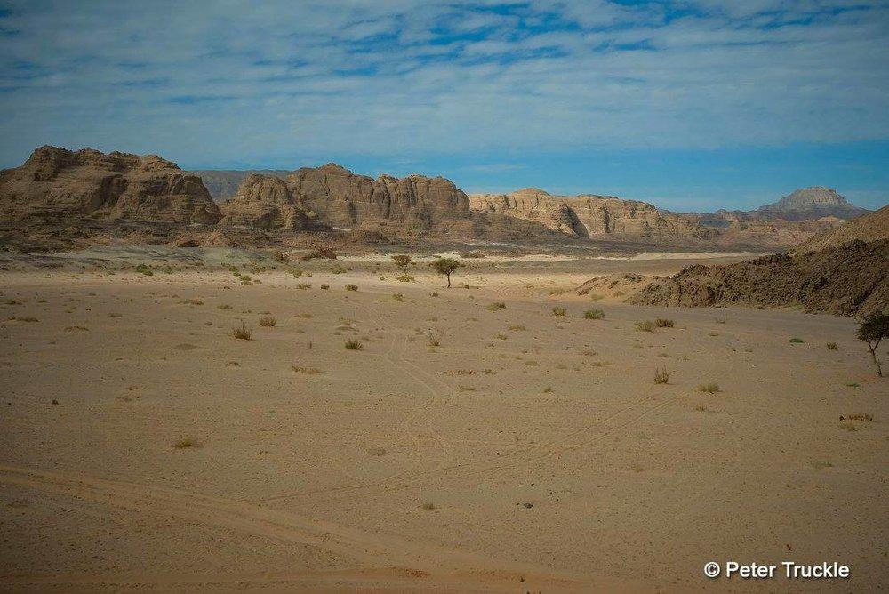 Wadi Zalaga Camel Race South Sinai