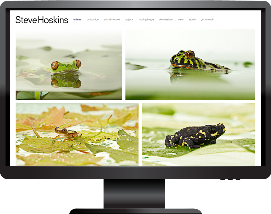 Squarespace photography website