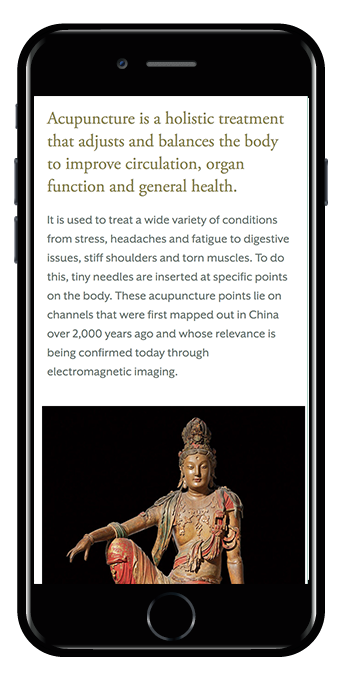 Mobile view Hayden template acupuncture