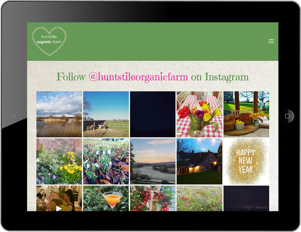 Instagram block Squarespace farm website