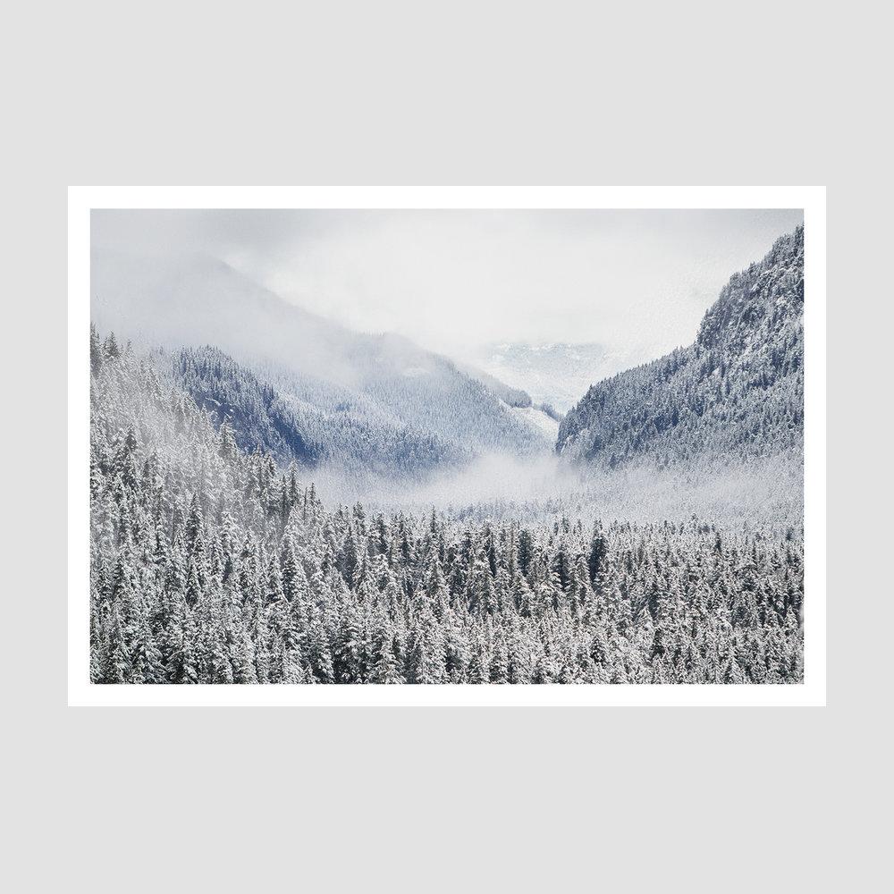 IMG_D87A0071 - Web framed .jpg
