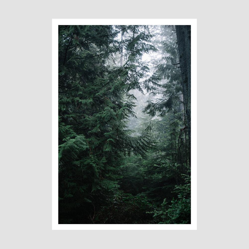 IMG_D87A7067 - Web framed .jpg