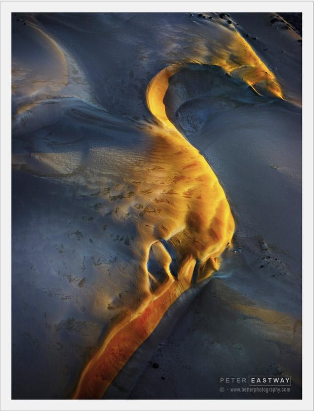 Sea Horse by Peter Eastway