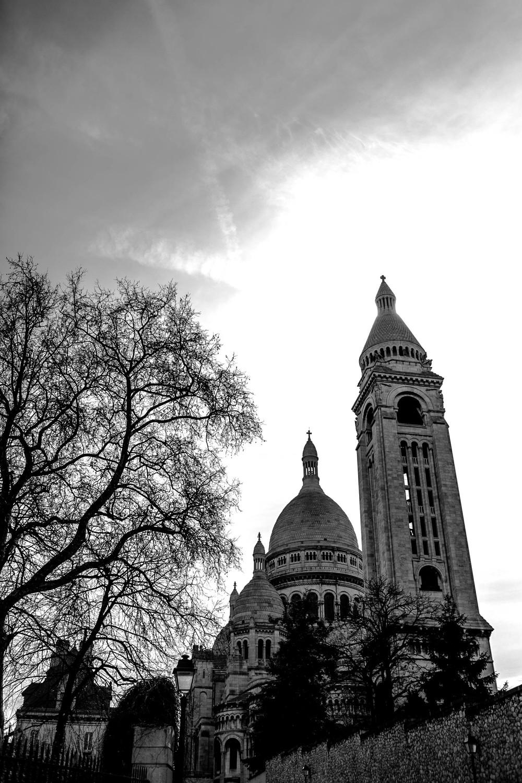 389A7956 Paris.jpg
