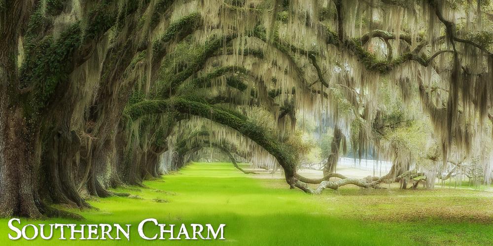 Southern_Charm_8.jpg