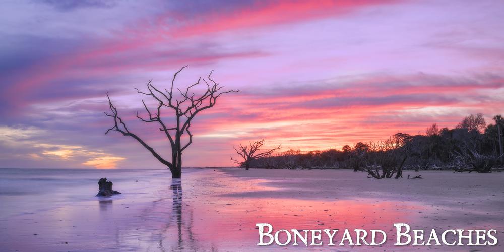 Boneyard_Beaches_8.jpg