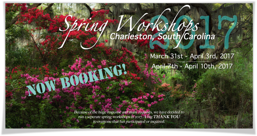 2017_charleston_spring_workshop