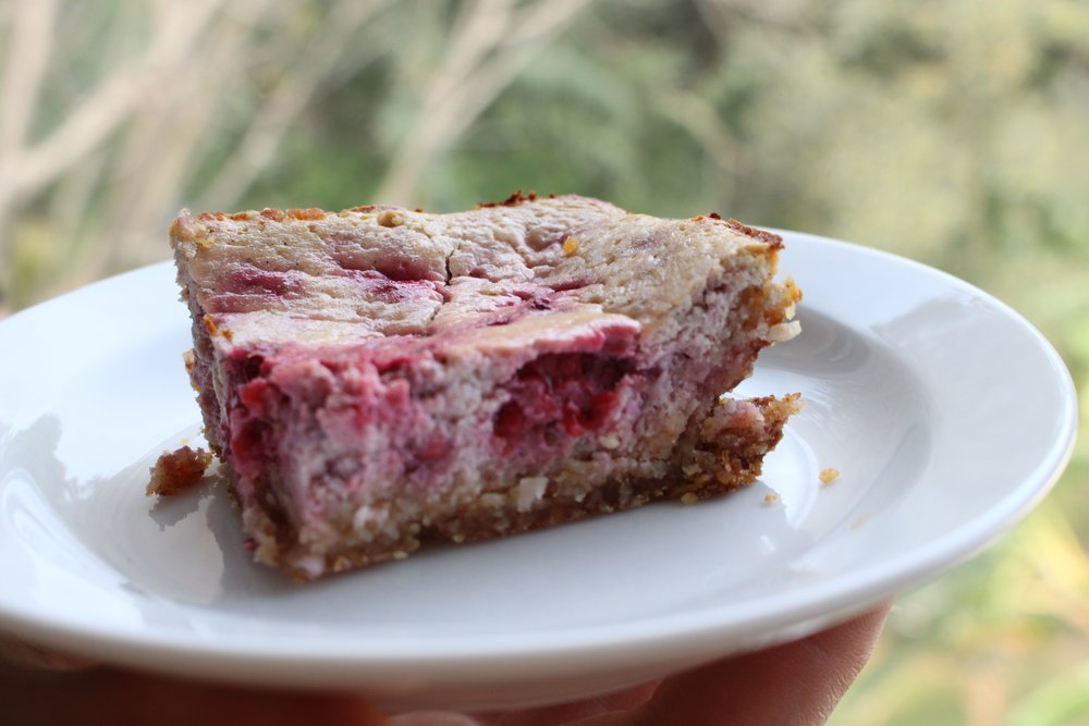 raspberry coconut yogurt slice