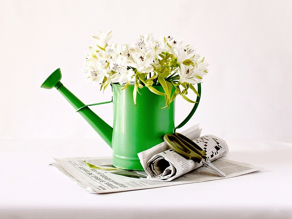 """Untitled"" Still life with Flowers and Newspapers 2010"
