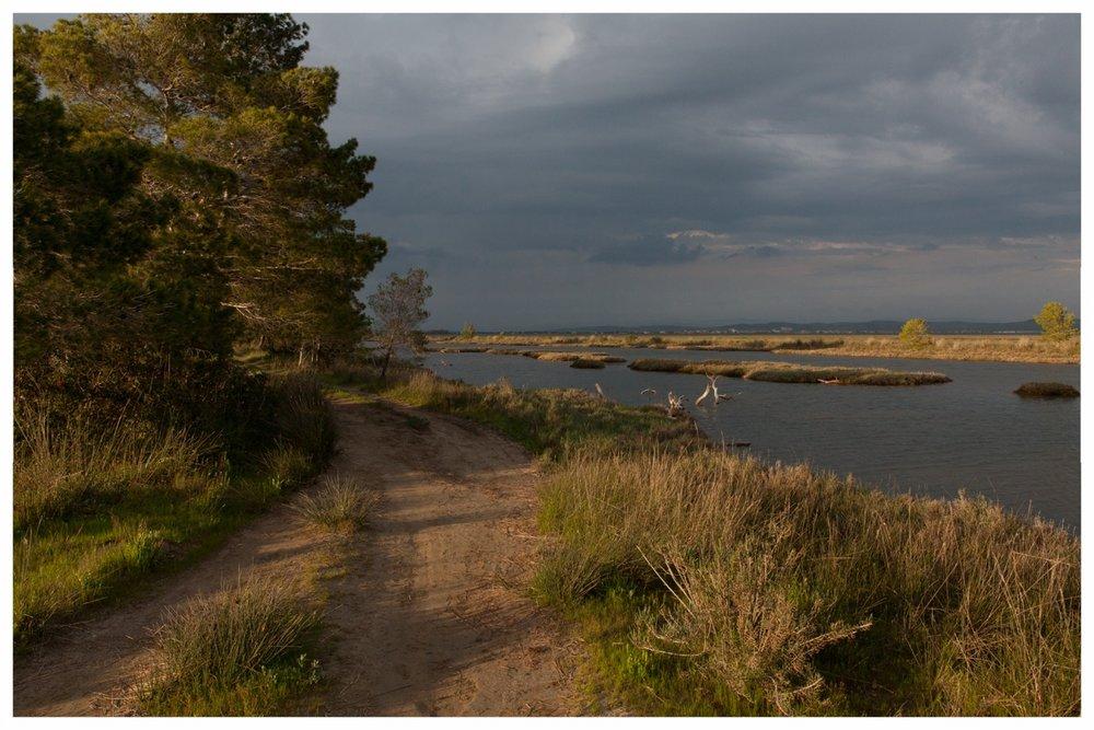 Karavasta Lagoon, Divjaka National Park 2016