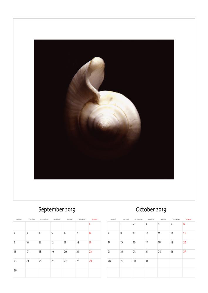 shtator-tetor.jpg