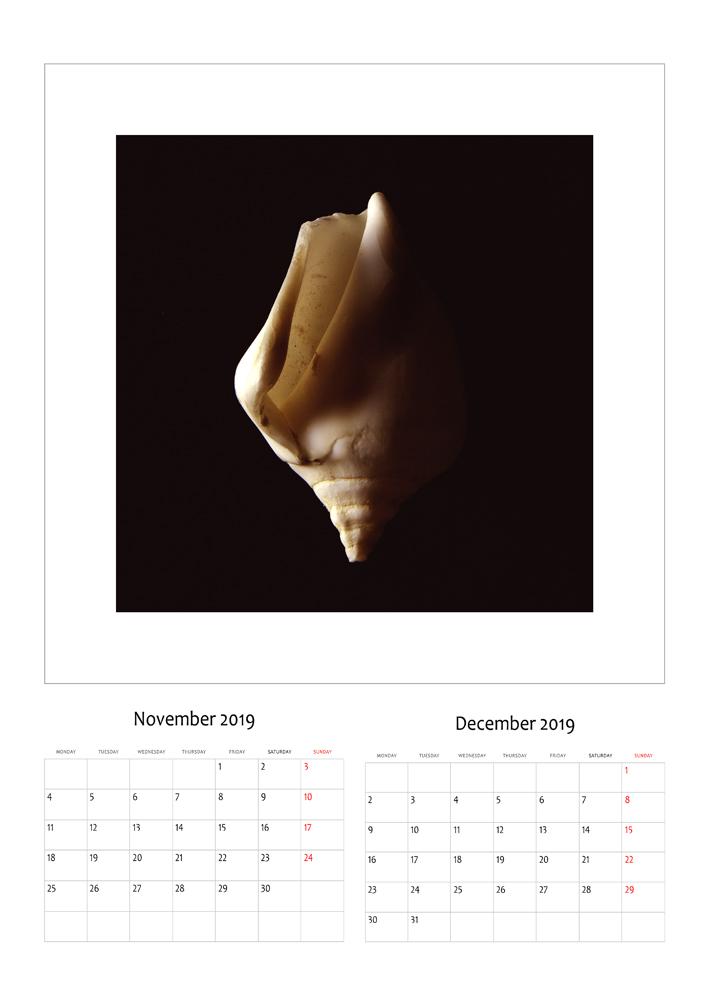 nentor-dhjetor.jpg