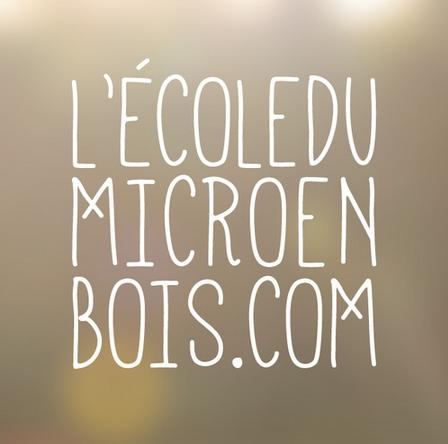L'ecole du micronenbois.com