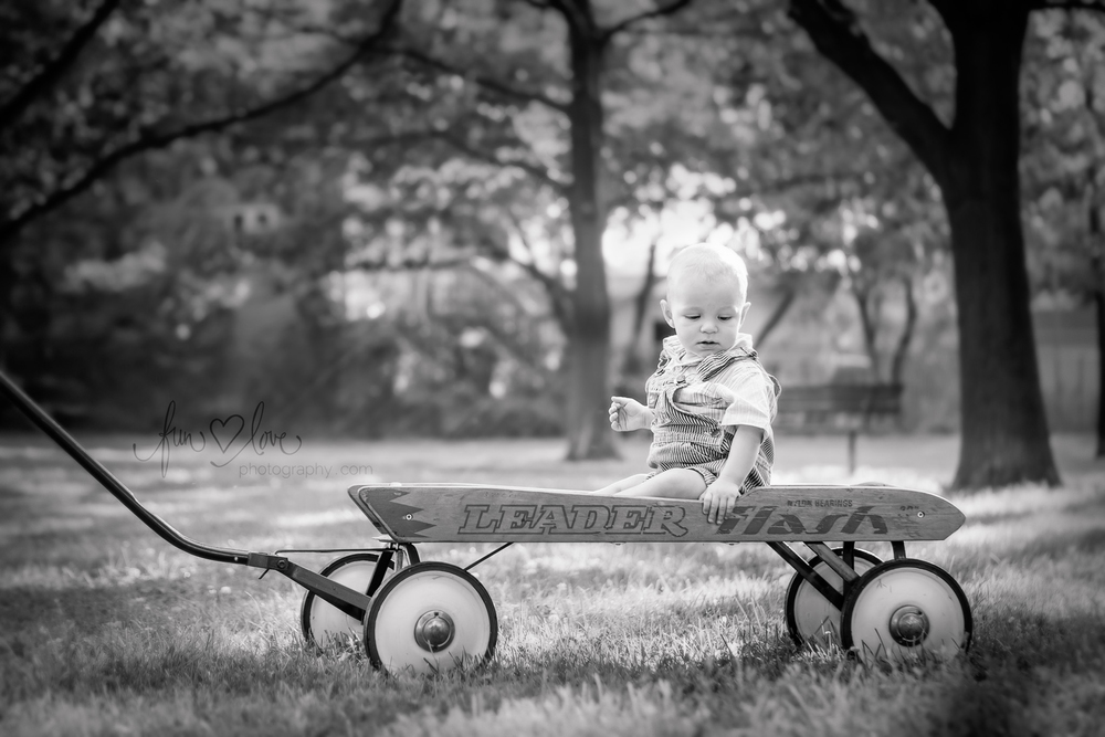 baby-boy-in-wagon-toronto-baby-photography