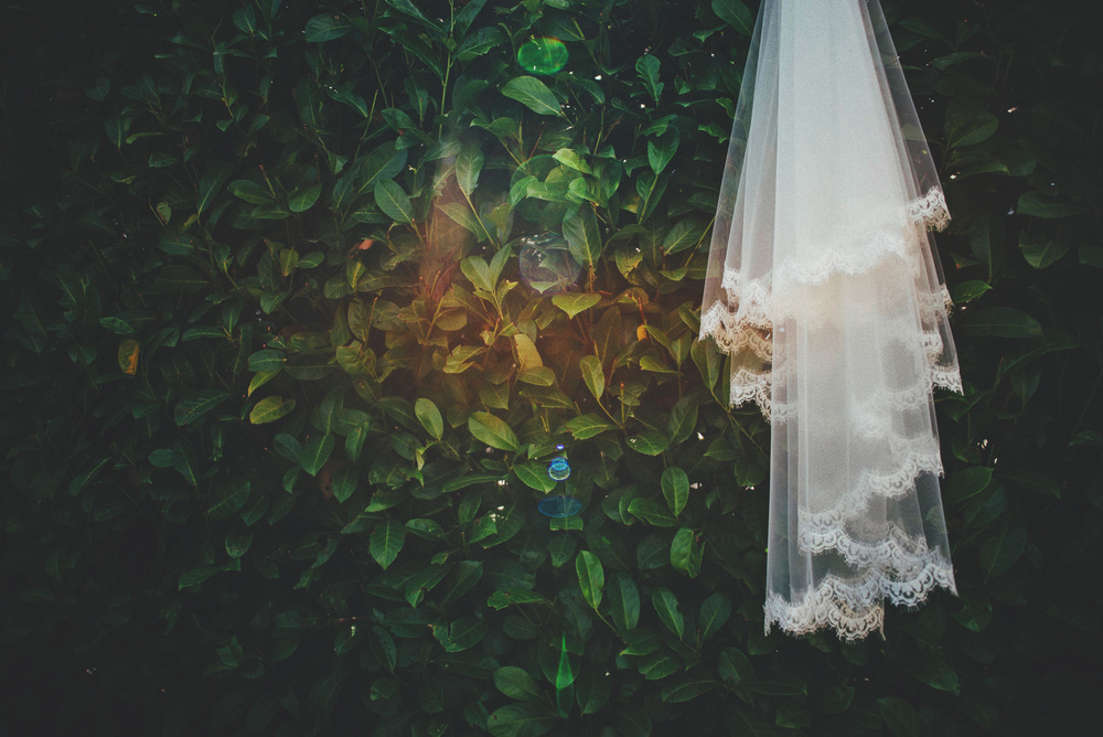 Veil hangs on bush in sun essex UK Documentary Wedding Photographer